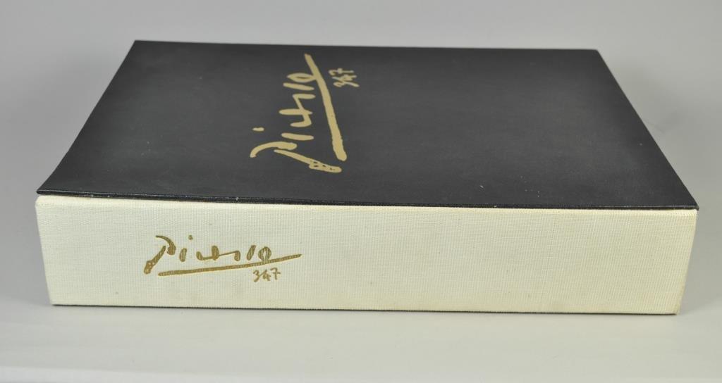 PICASSO 347 SERIES BOOKS VOLUMES I & II