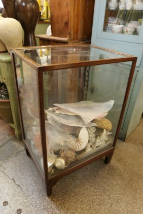 Vintage Display Cabinet Along With Coral And