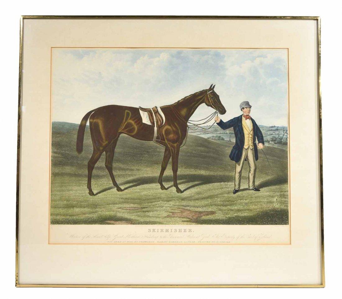SKIRMISHER HORSE PRINT C.1850'S
