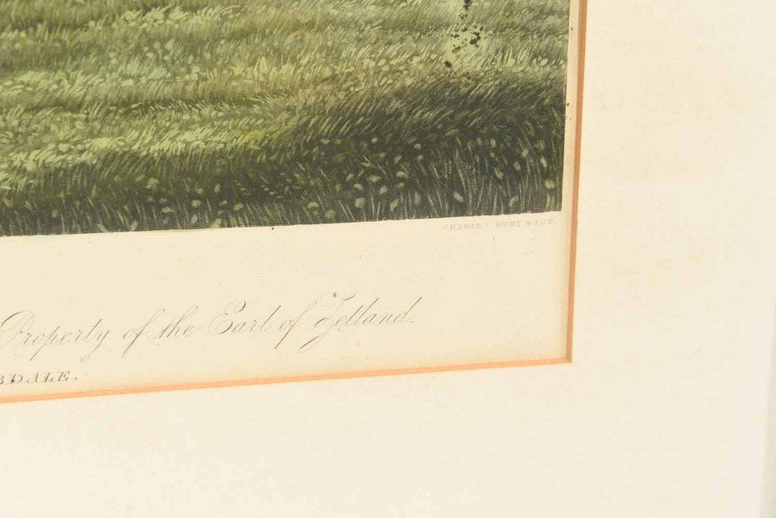 SKIRMISHER HORSE PRINT C.1850'S - 5