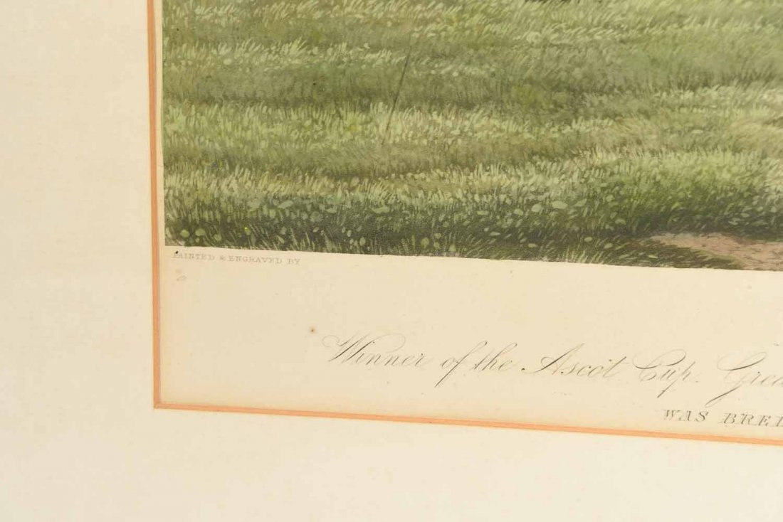 SKIRMISHER HORSE PRINT C.1850'S - 7