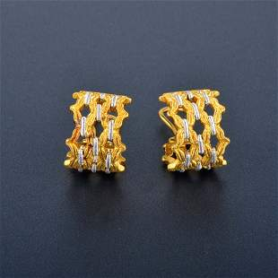 Buccellati 2-tone Earrings
