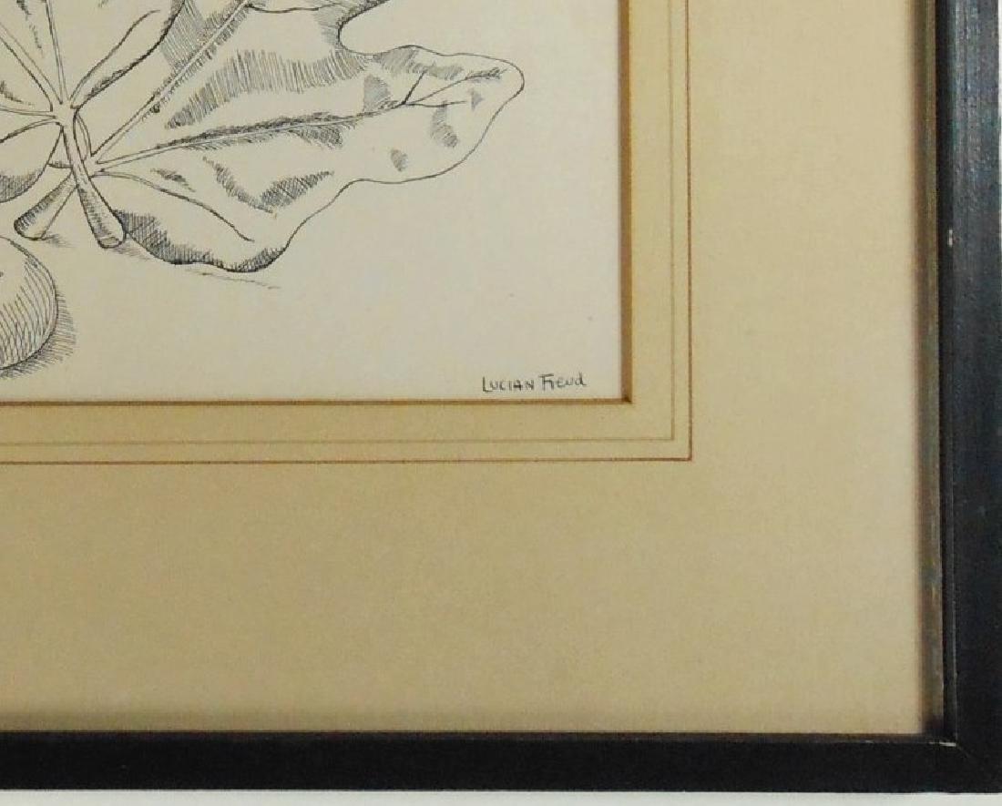 Lucian Freud (1922-2011) Pen & Ink Drawing - 3