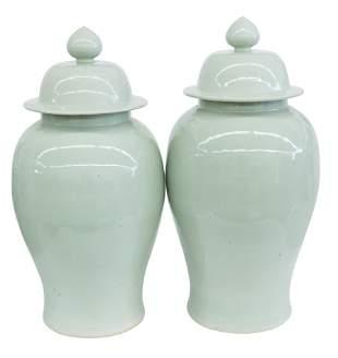 Large Chinese Celedon Temple Jars