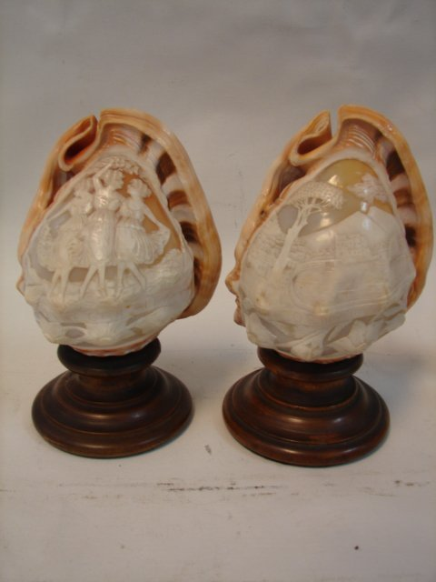 2 Carved Conch Shells