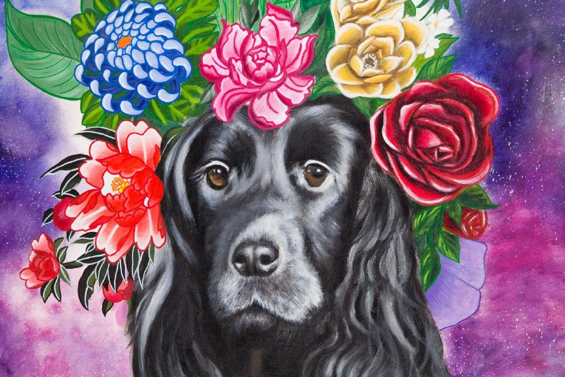 Karolina Fox (b. 1988), Celebrity dog, 2017 - 4