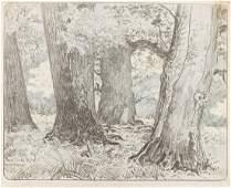 Leon Wyczolkowski, (1852 - 1936), Oaks (Deby), plate