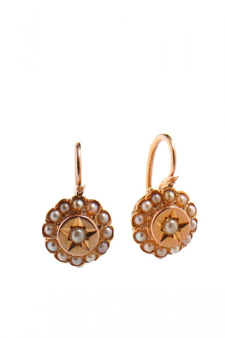 1: Earrings, France, XIX th century gold   0,750, semi-