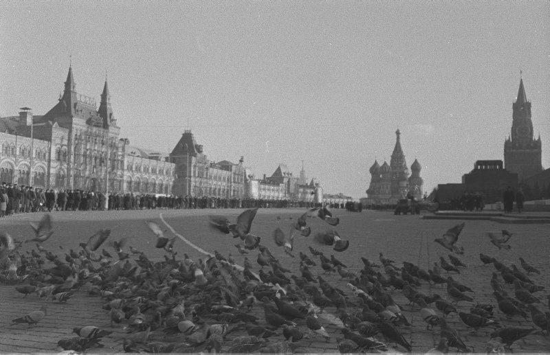 Wladyslaw (Wolf) Slawny (1907 Nowy Korczyn - 1991 Par
