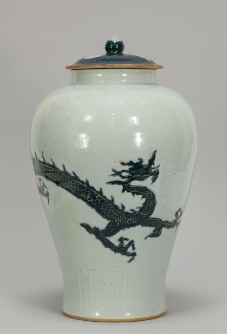 Chinese Ming Style Blue/White Porcelain Vase