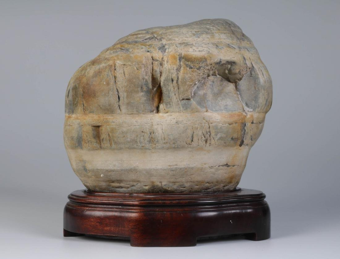 Chinese Scholar Stone w/ Hardwood Stand
