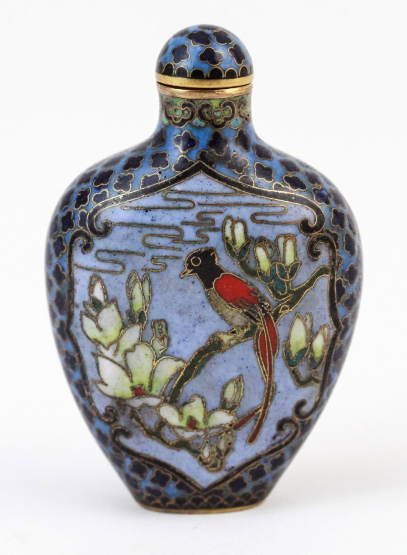 6: Chinese Cloisonne Snuff Bottle
