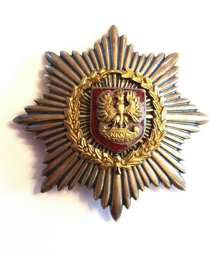 Antique Polish Silver Enamel large breast star