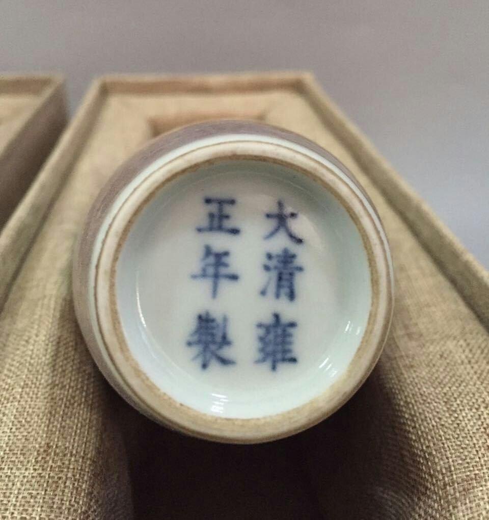 Pr of Chinese Blue/White Copper Red Porcelain Vase - 8