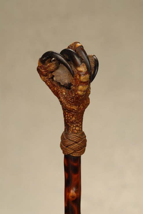 An unusual cane with a real bird of prey claw handle
