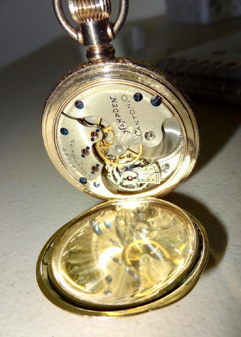 Hamden Multicolored Lady's Watch - 3