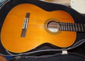 Shinani Concert Guitar In Case