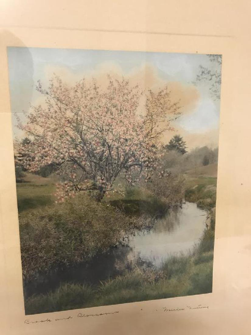 Brook and Blossoms Wallace Nutting exterior - 2
