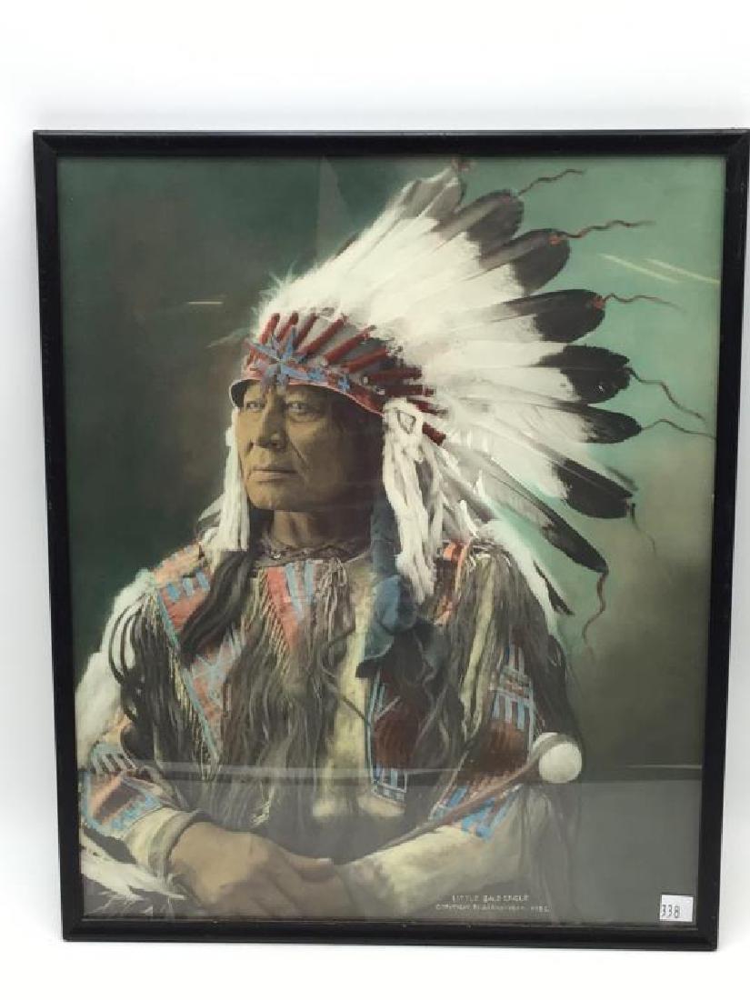 Little Bald Eagle, color print copyright 1903