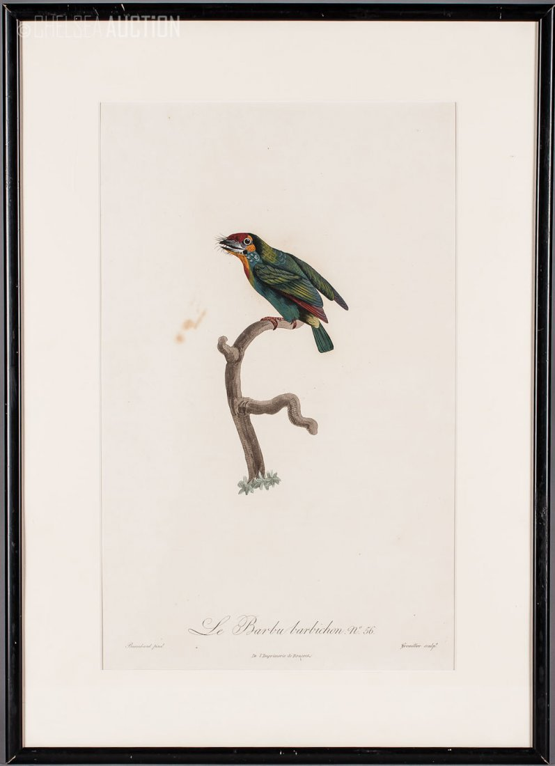 3: 19th C. French, Hand  Colored Etching, Barraband