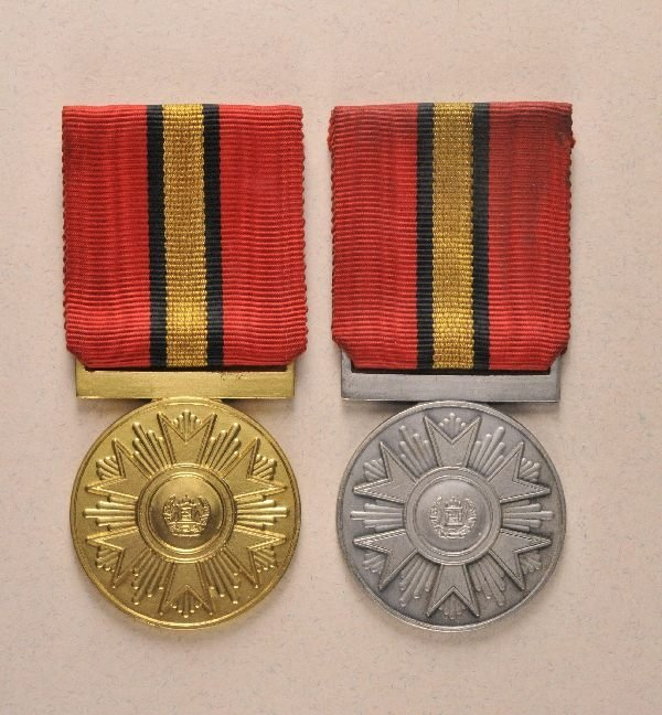 11: Afghanistan - Medal of the Order of the Fatherland