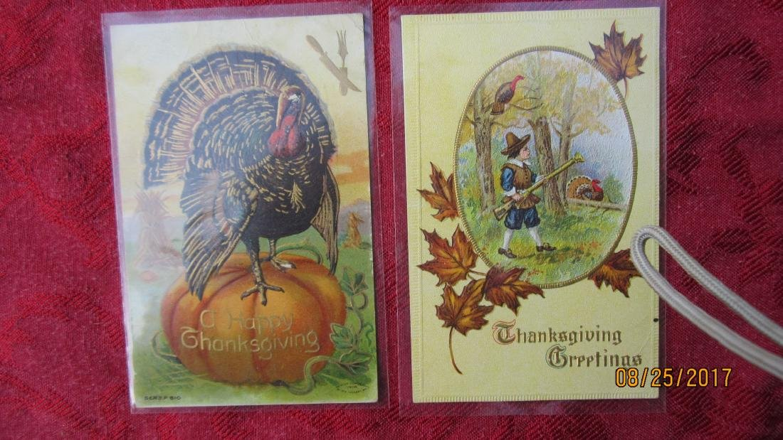 LOT OF 25 THANKSGIVING POSTCARDS - MOST IN PLASTIC - - 6