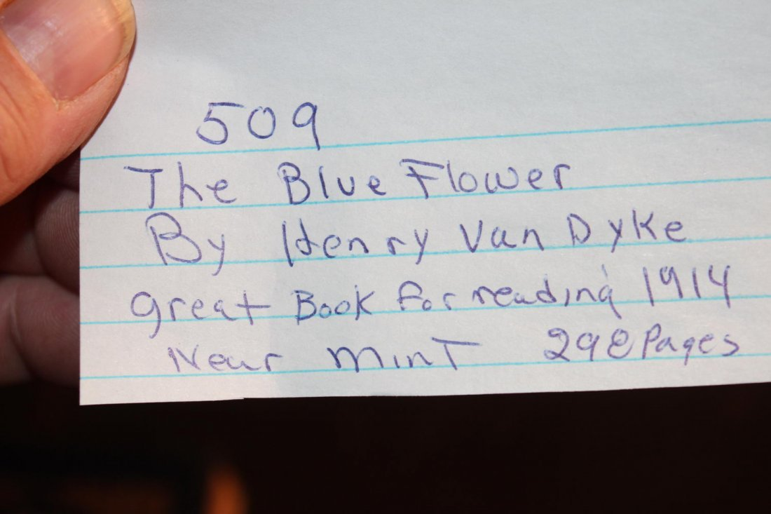 THE BLUE FLOWER BY HENRY VAN DYKE GREAT BOOK FOR - 3