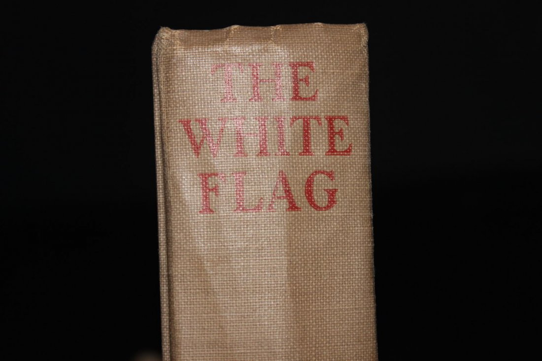 THE WHITE FLAG A STORY BY STRATTON PORTER 1923 FIRST - 3