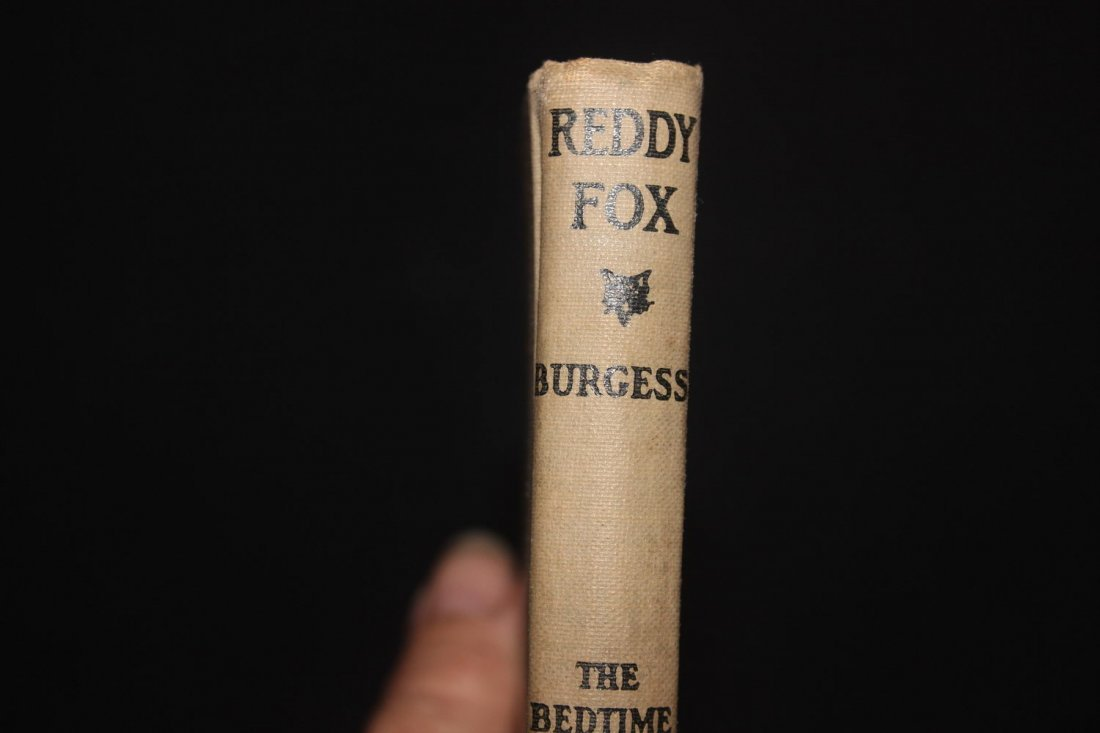 THE ADVENTURES OF REDDY FOX 1920 GREAT YOUNG PEOPLE'S - 2