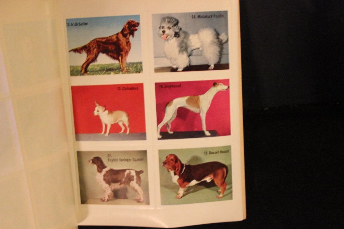UNUSED AND COMPLETE DAVY CROCKETT STAMP BOOK NEAR MINT - 2