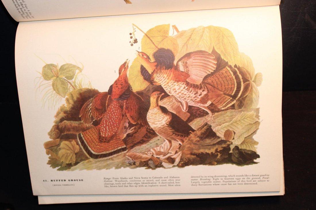 BIRDS OF AMERICA BY JOHN J AUDUBON 1944 ILLUSTRATED - 2