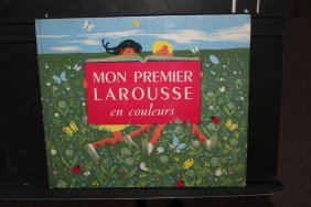 Another French Book Mon Premier Larouse En Couleurs