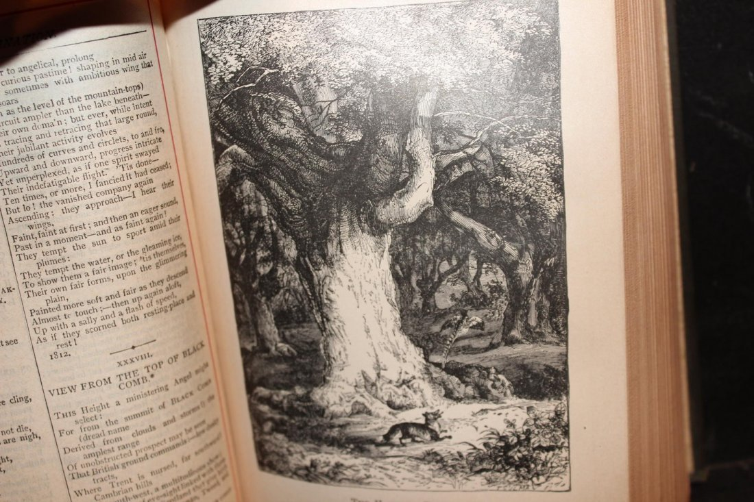 WORDSWORTH POEMS PUBLISHED BY JOHN LOVELL 770 PAGES - 3