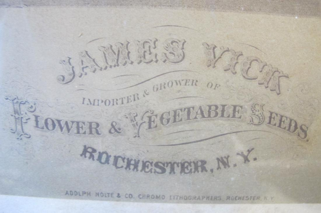 James Vick Important Grower of Flowers and Vegetable - 3