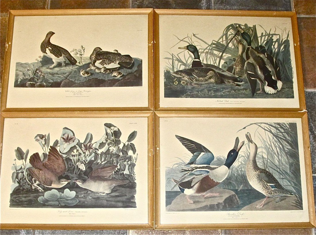 106: Collection of Four Nature Prints by J.J. Audubon,