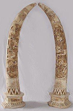 "32B: One pair ""Bone Tusk"" Carved"