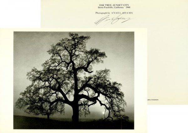 0599: ANSEL ADAMS SIGNED PHOTO REPRODUCTION