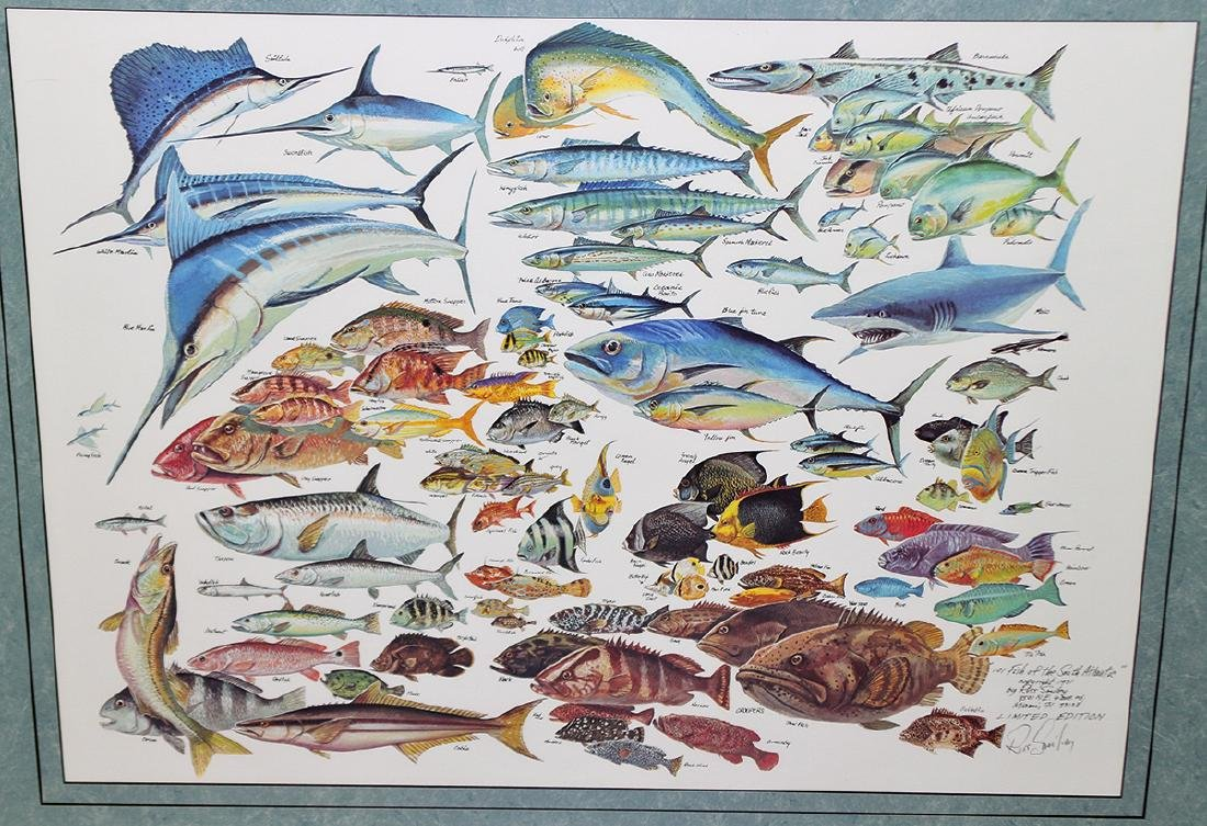 RUSS SMILEY 101 FISH OF THE SOUTH ATLANTIC ART - 2