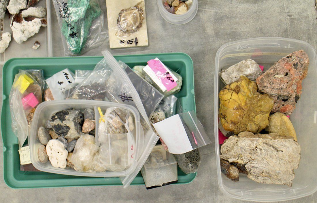 LARGE COLLECTION OF GEODES, ROCKS, & FOSSILS - 3