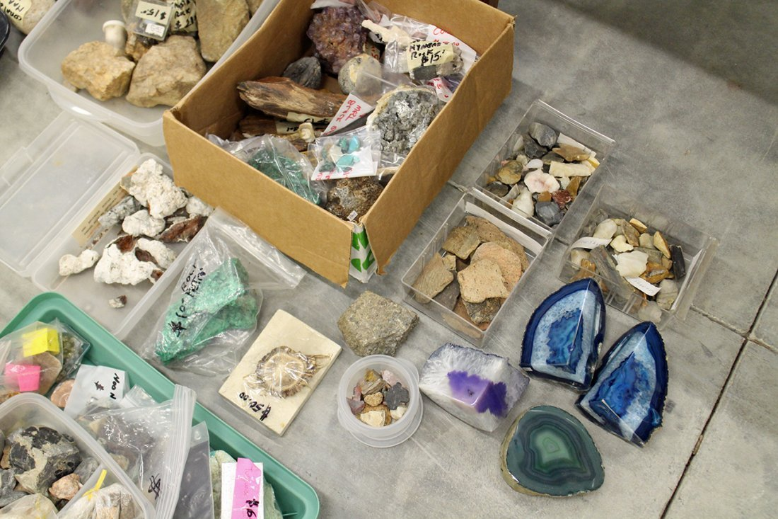 LARGE COLLECTION OF GEODES, ROCKS, & FOSSILS - 4