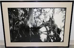 CLYDE BUTCHER LAKE ISTOKPOGA PHOTOGRAPH