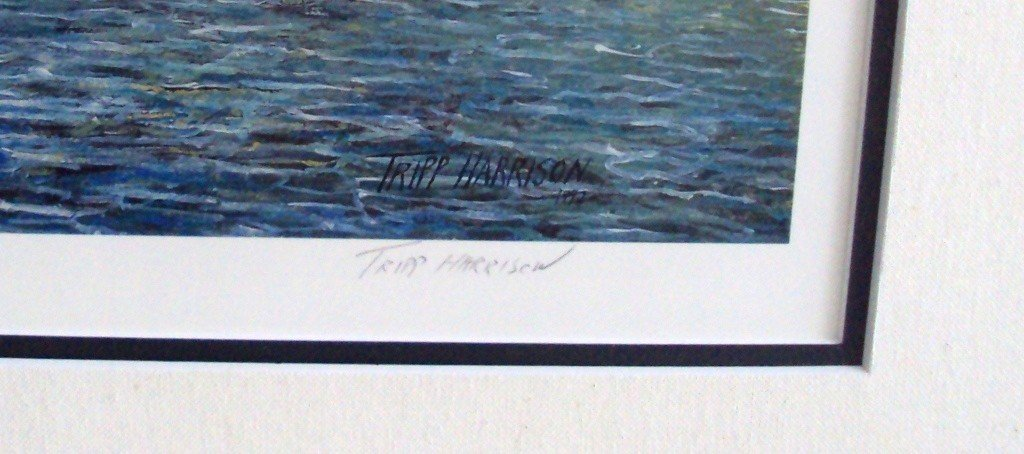 26: Tripp Harrison Island Cove - 2