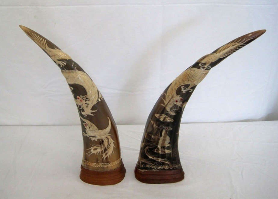268: Pair Carved Water Buffalo Horns