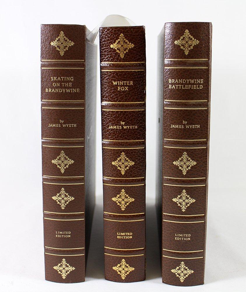 (3) STERLING FRANKLIN MINT JAMES WYETH PLATES - 4