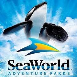3204: Sea World San Antonio