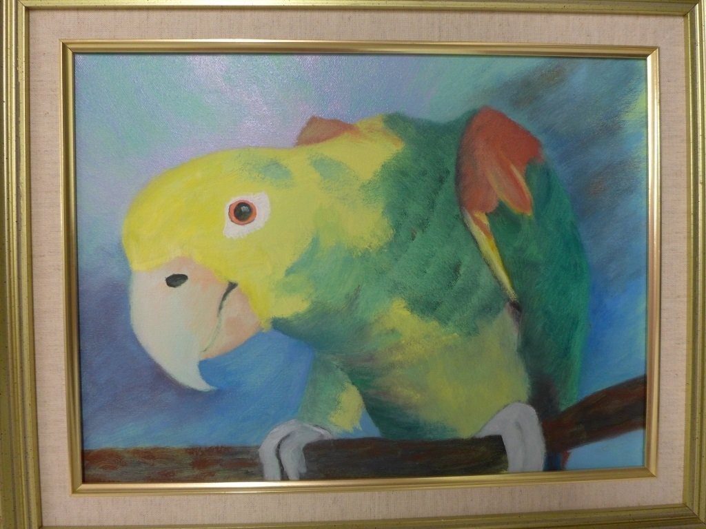 Safari and Parrot Paintings, artist signed - 6