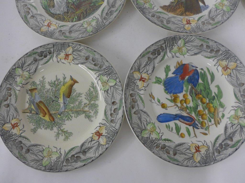 John James Audubon Hand Colored Decorative Plates - 7