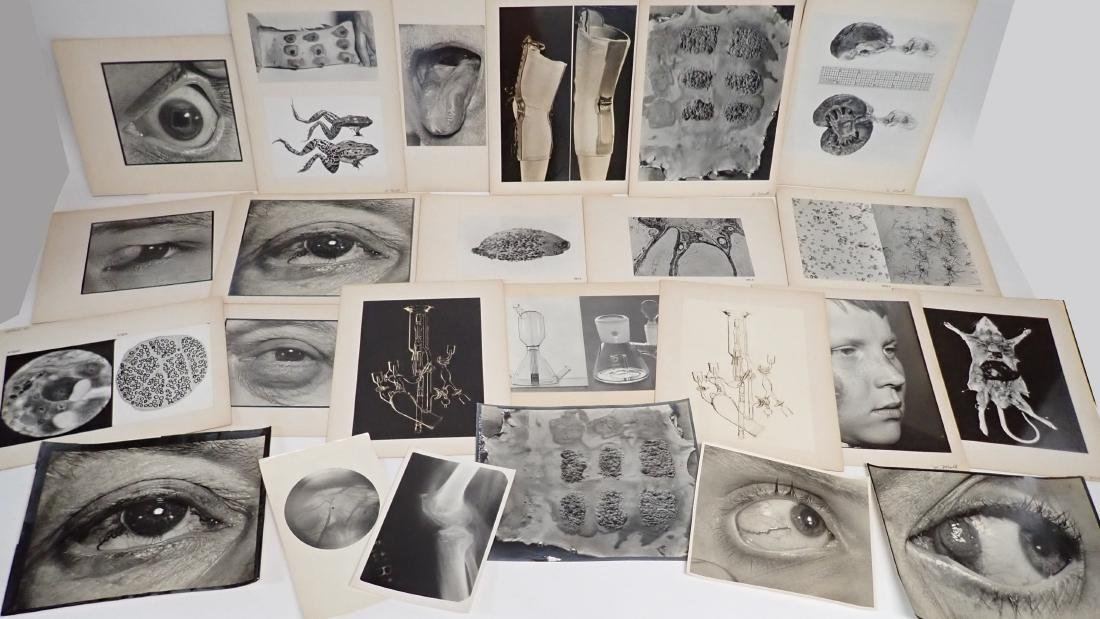 Collection of Vintage Professional Photographs - 7
