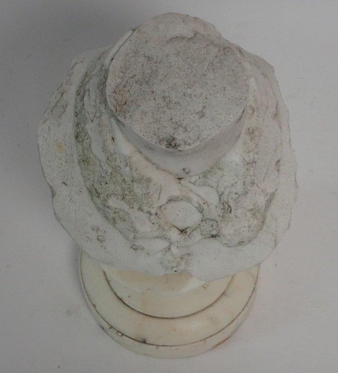 Headless Marble Bust - 5