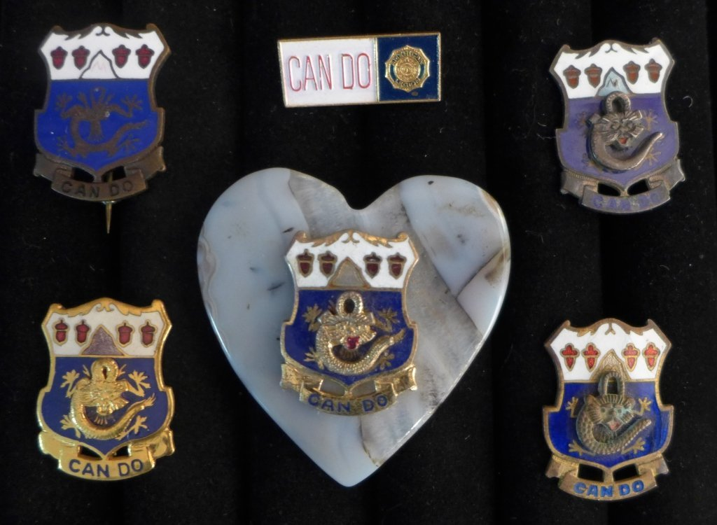 Collection of American Legion Pins